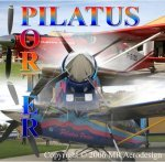 RC Pilatus Turbo Porter PC-6:DVD