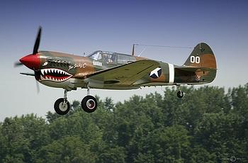 The P-40 Warhawk