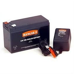Hangar 9 12V battery
