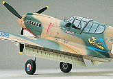 Top Flite P-40 RC airplane