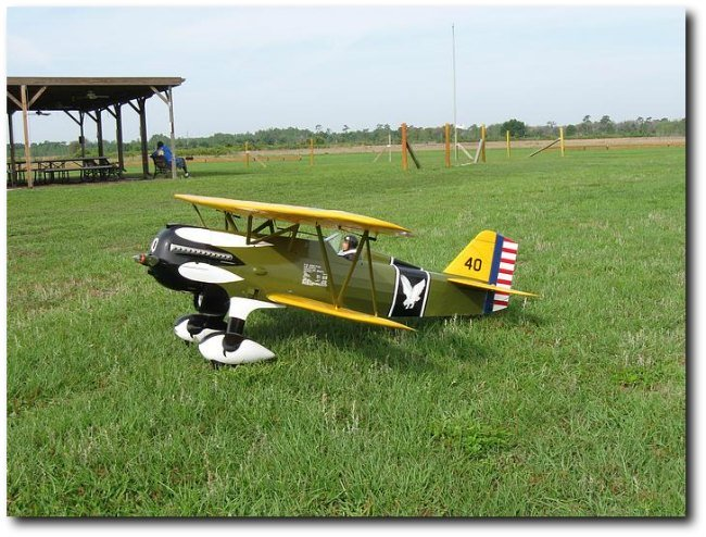 Curtiss P-6E Hawk:1/4 scale RC airplane