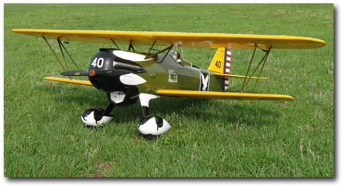 Curtiss P-6E Hawk:1/4 scale RC model