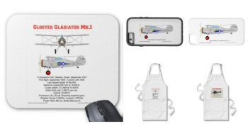 Collage of Zazzle Airplane gifts